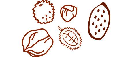 Production de marrons, châtaignes, noix, noisettes et amandes en Dordogne-Périgord